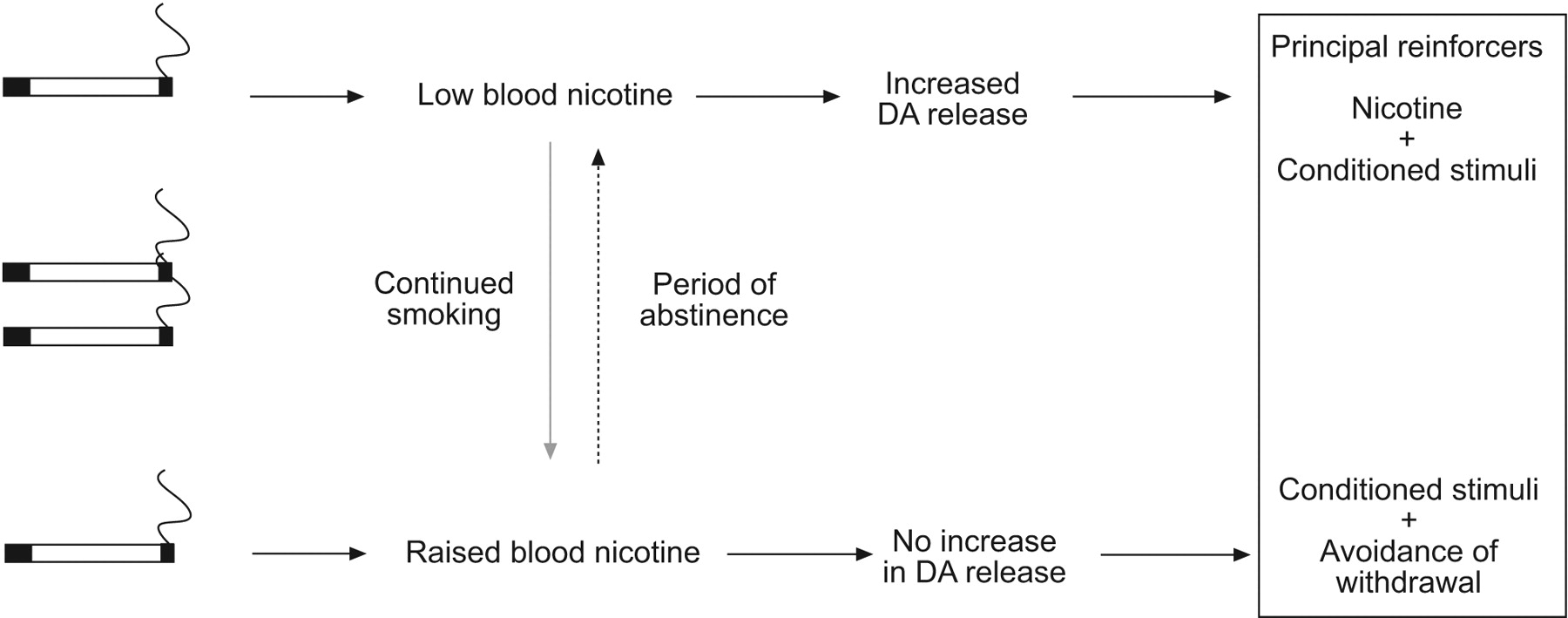 The Psychobiology Of Nicotine Dependence European Respiratory Society E Cigarette Block Diagram Download Figure
