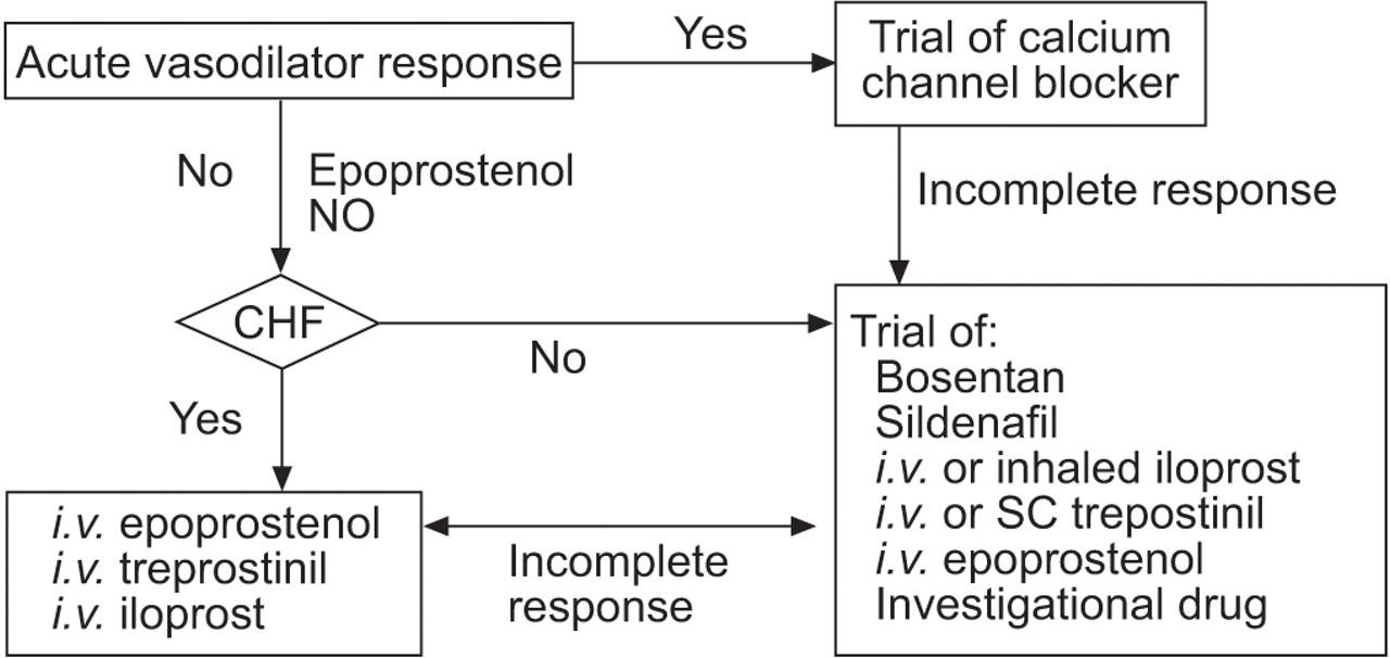 Paediatric pulmonary hypertension: monitoring progress and