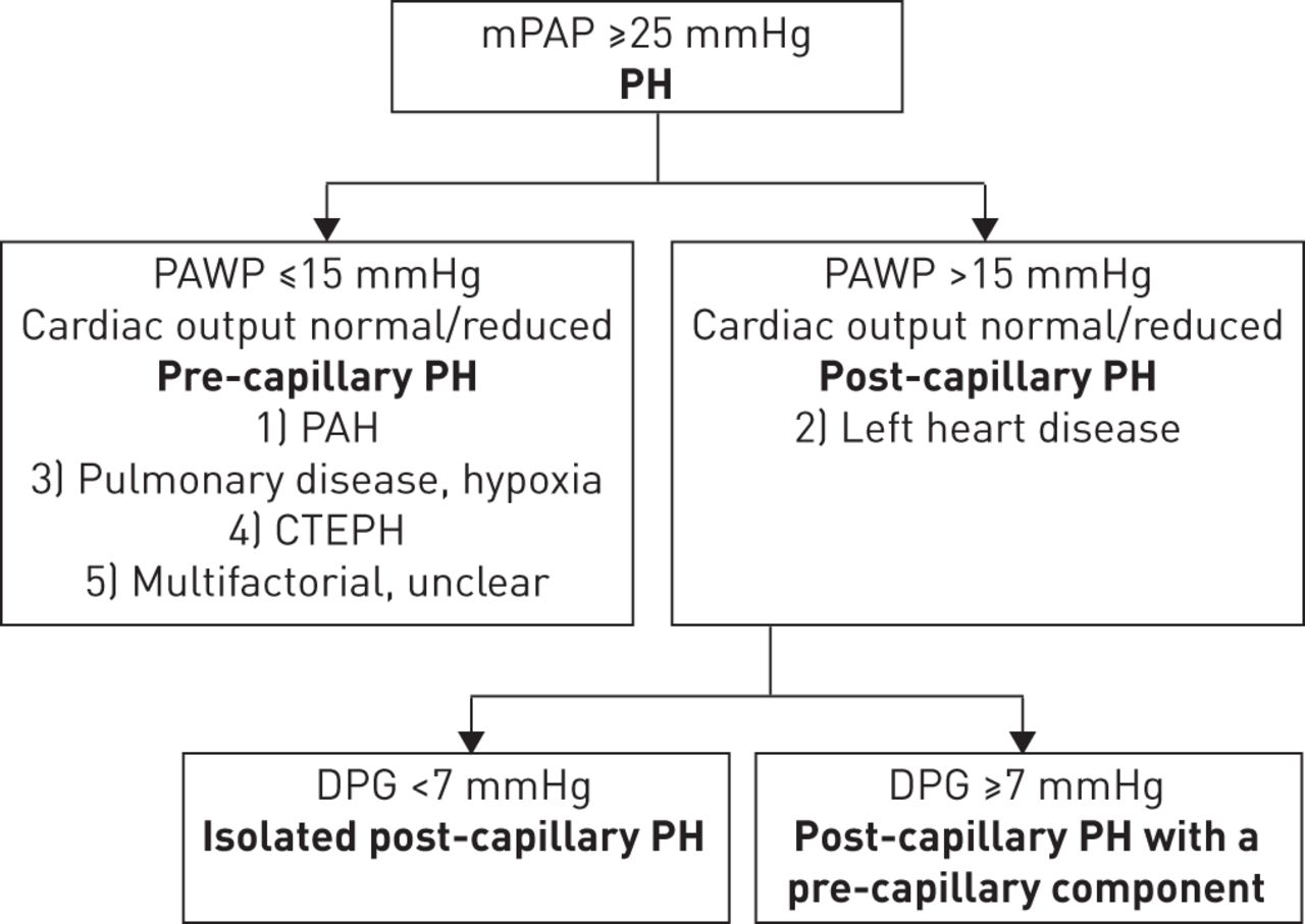 case study hypertension cardiovascular diseases Vascular biology and hypertension program of the division of cardiovascular diseases,  case study, american journal of hypertension, volume 11, .