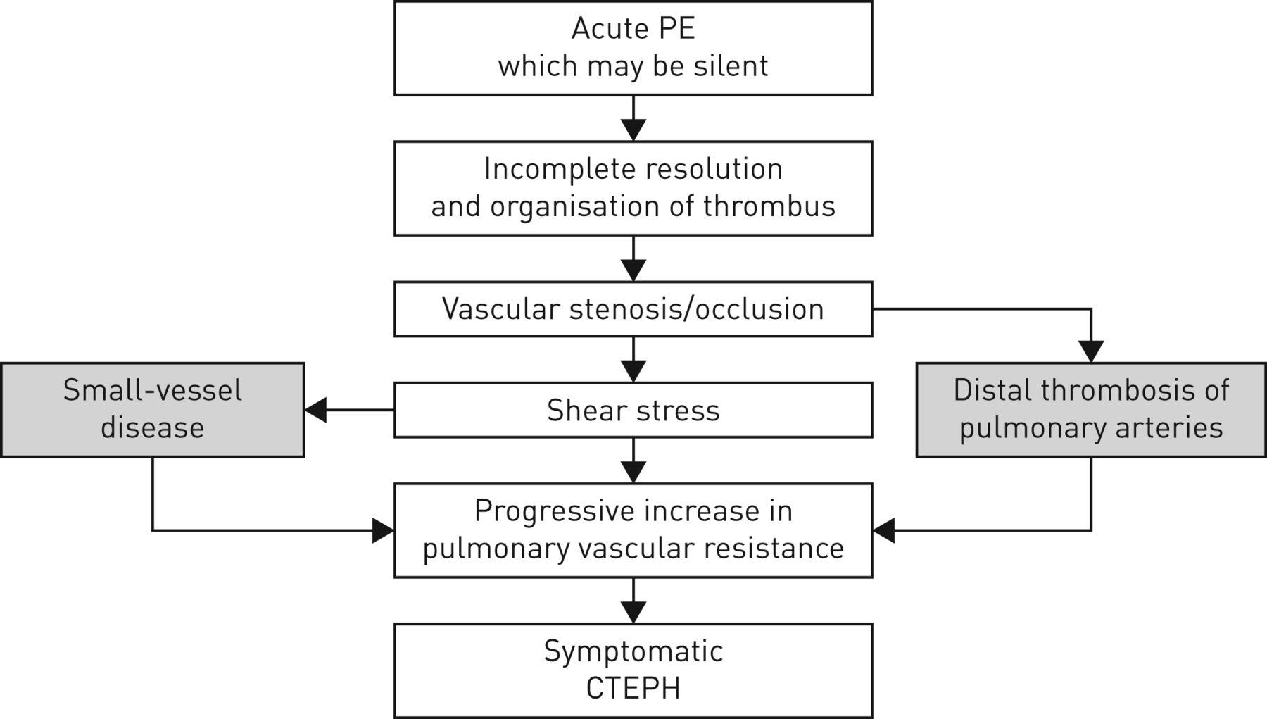 The Pathophysiology Of Chronic Thromboembolic Pulmonary Hypertension