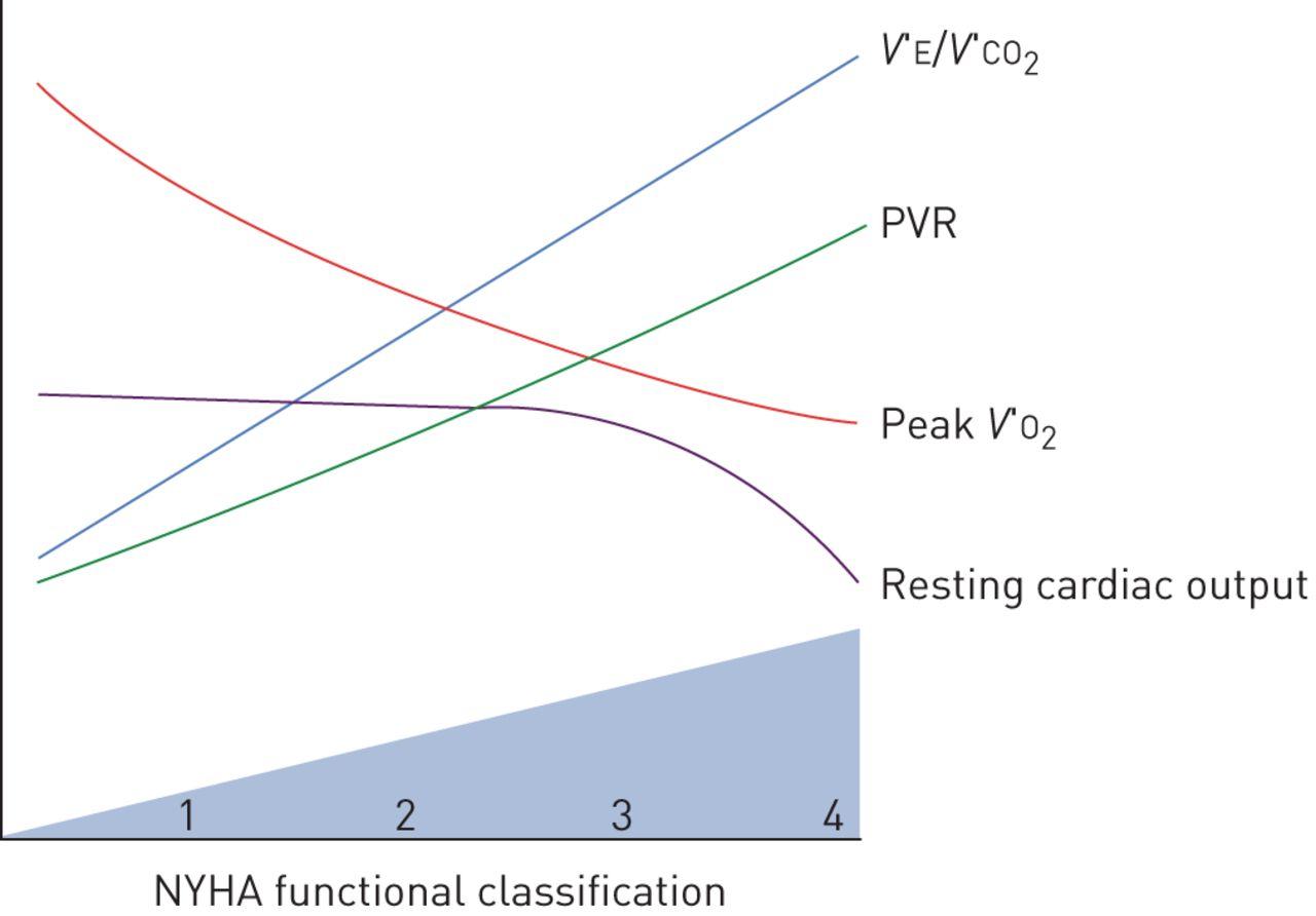 Exertional dyspnoea in pulmonary arterial hypertension
