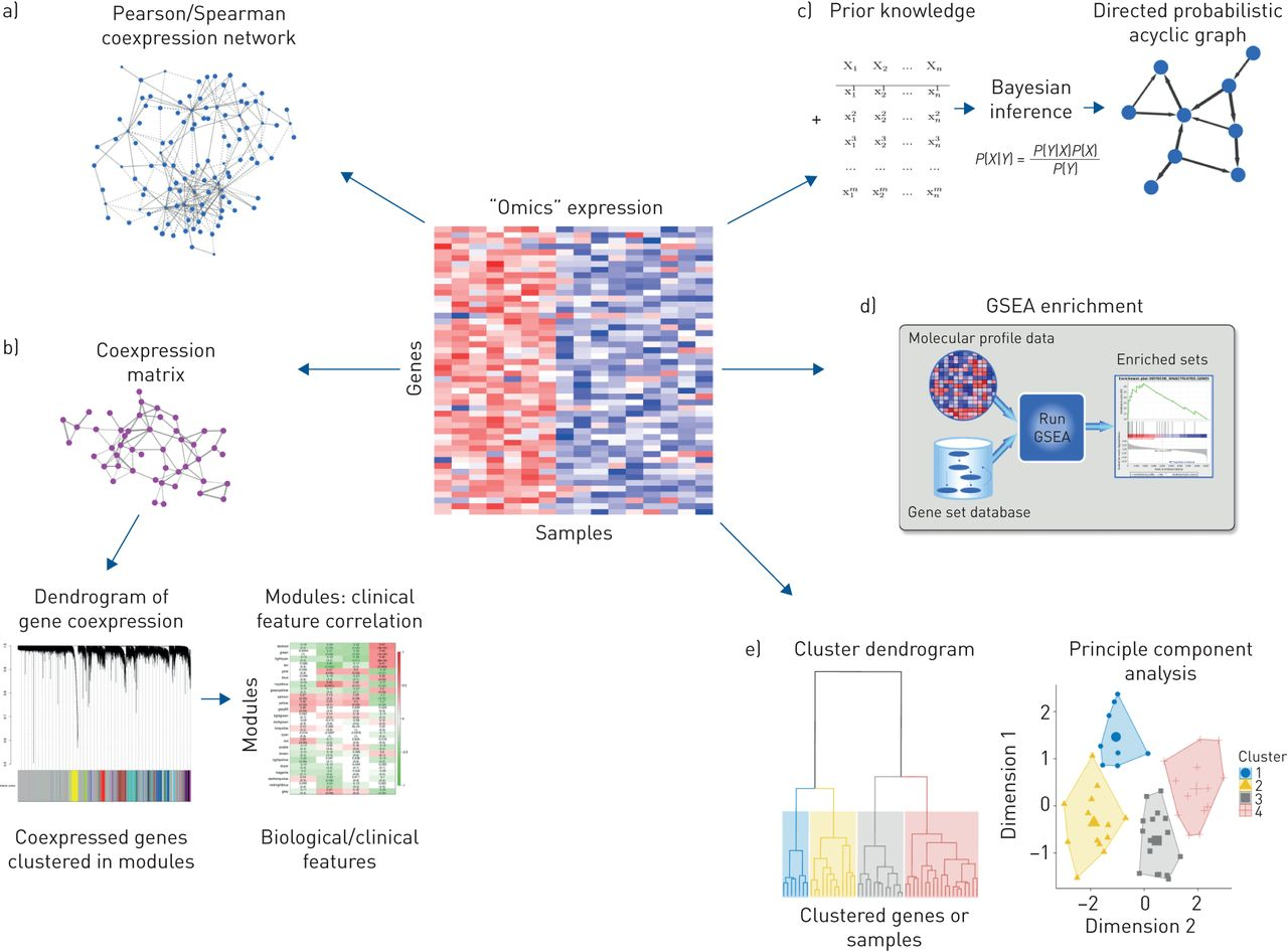 From systems biology to P4 medicine: applications in